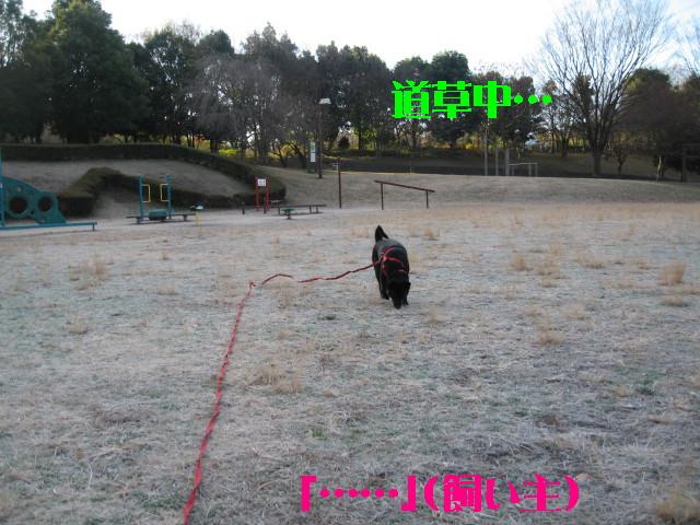 Img_1994_1